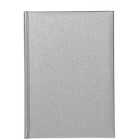 Ежедневник CARIBE серый (не датированный)