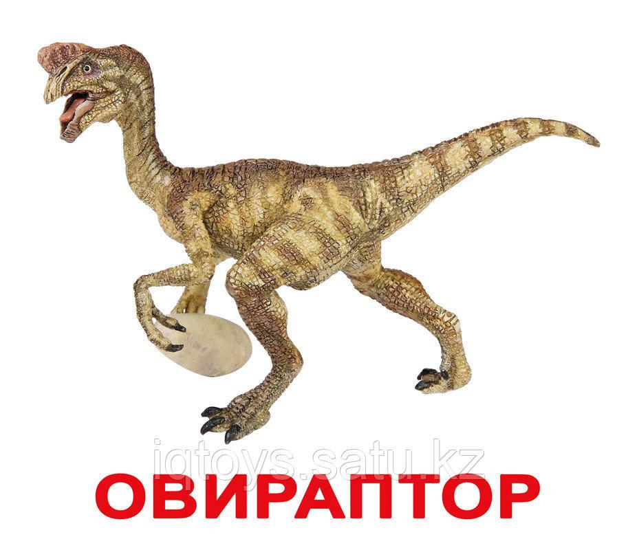 Комплект карточек Динозавры