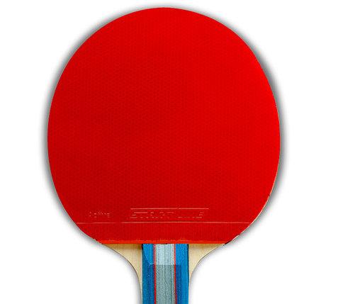 Набор: 4 Ракетки Level 200, 6 Мячей Club Select, упаковано в сумку на молнии с ручкой., фото 2