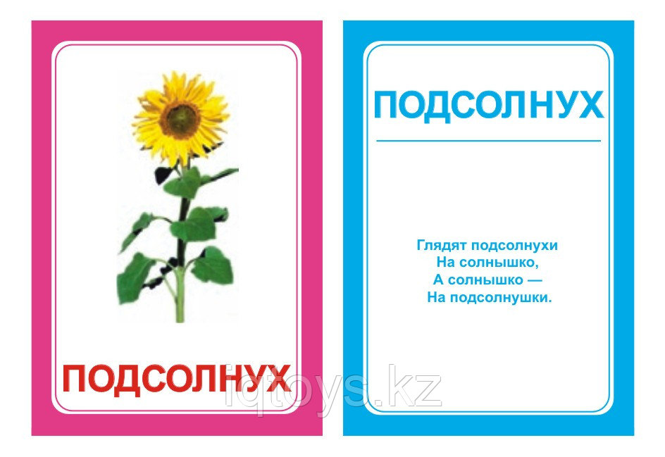 Комплект карточек Логопедка Л
