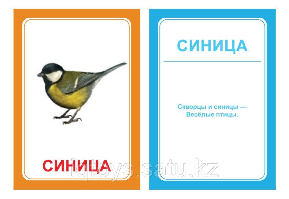 Комплект карточек Логопедка Ц