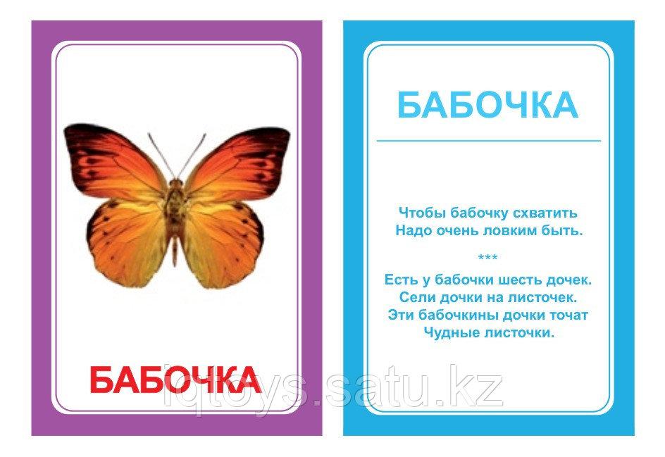 Комплект карточек Логопедка Ч