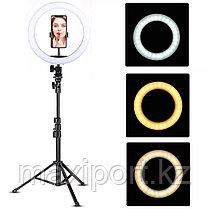 Кольцевая лампа напольная (36 см)  F-360 металлическая противоударная высота штатива от 60 до 210см, фото 2