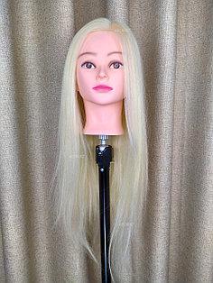 Голова-манекен блонд волос натуральный (60%) - 60 см