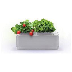 Смарт-сад iGarden с электронным контролем уровня воды умный дом