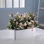Смарт-сад iGarden с электронным контролем уровня воды умный дом, фото 4