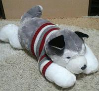 Собачка мягкая Хаски лежачая 65 см в свитре