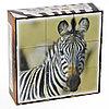 Кубики пластмассовые «Животные Африки», 9 штук