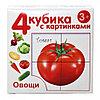 Пластмассовые кубики с картинками «Овощи», 4 штуки