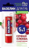 ФК 7908 Для губ Вазелин Сочная клюква 4,5 гр