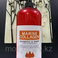 Aspar Косметический шампунь с морским коллагеном 1500 мл., фото 2