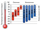 Масло TRIATHLON синтетика ENDURANCEIII-5W30, 1 л., фото 2