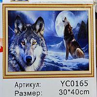 Алмазная картина 40*30 13