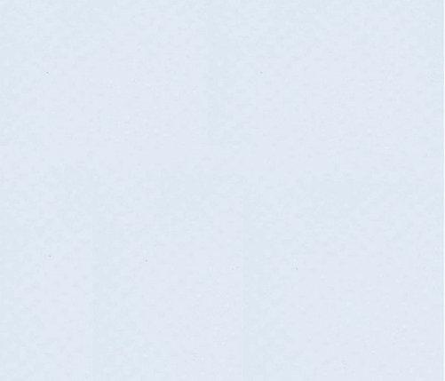 ПВХ мембрана (алькорплан) Cefil INTER (белый), фото 2