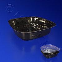 Kazakhstan Контейнер пластиковый 250мл PET черный 12,5х12,5х3,5см ИПКВ-250 Д