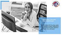 Услуги видеоконференций онлайн и видеотрансляций (мероприятий, трансляций и видеоконференций онлайн), фото 3
