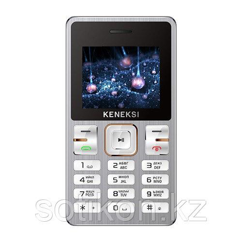 Мобильный телефон Keneksi M2 серебро
