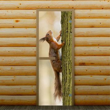 """Дверь для бани и сауны """"Белка на дереве"""", 190 х 70 см, с фотопечатью 6 мм Добропаровъ"""