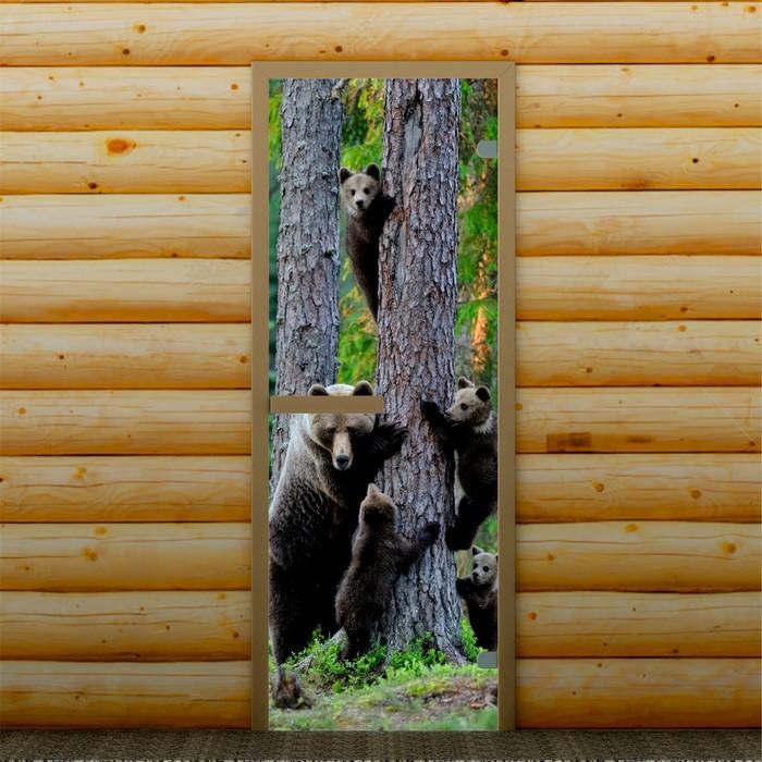 """Дверь левое открывание """"На прогулке"""", 190 х 70 см, с фотопечатью 6 мм Добропаровъ"""