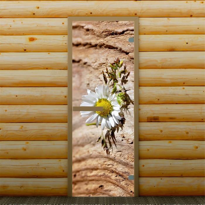 """Дверь для бани и сауны """"Ромашка"""", 190 х 70 см, с фотопечатью 6 мм Добропаровъ"""