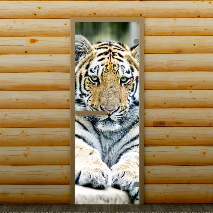 """Дверь левое открывание """"Тигр"""", 190 х 70 см, с фотопечатью 6 мм Добропаровъ"""