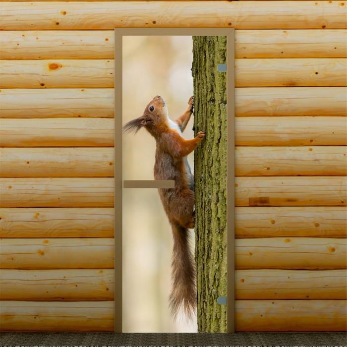 """Дверь левое открывание """"Белка на дереве"""", 190 х 70 см, с фотопечатью 6 мм Добропаровъ"""