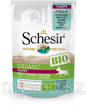 Schesir Bio консервы для щенков, курица 85г