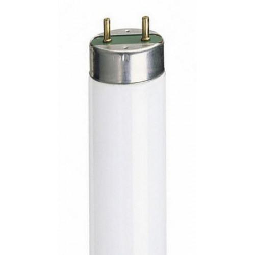 Лампа люмин. L36/77 FLORA OSRAM