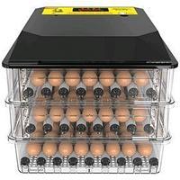 Инкубатор автоматический 'SITITEK 196' на 196 яиц, 220 В