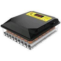 Инкубатор автоматический 'SITITEK 64' на 64 яйца, 220 В