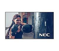 LCD панель NEC X555UNV