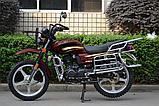Мотоцикл ALMOTO  150 кубовый 2020 года, фото 2