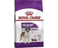ROYAL CANIN Giant Adult, Роял Канин корм для взрослых собак гигантских пород, уп. 15 кг
