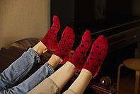 Носки. FRIDAY SOCKS. Признание кактусов, фото 3