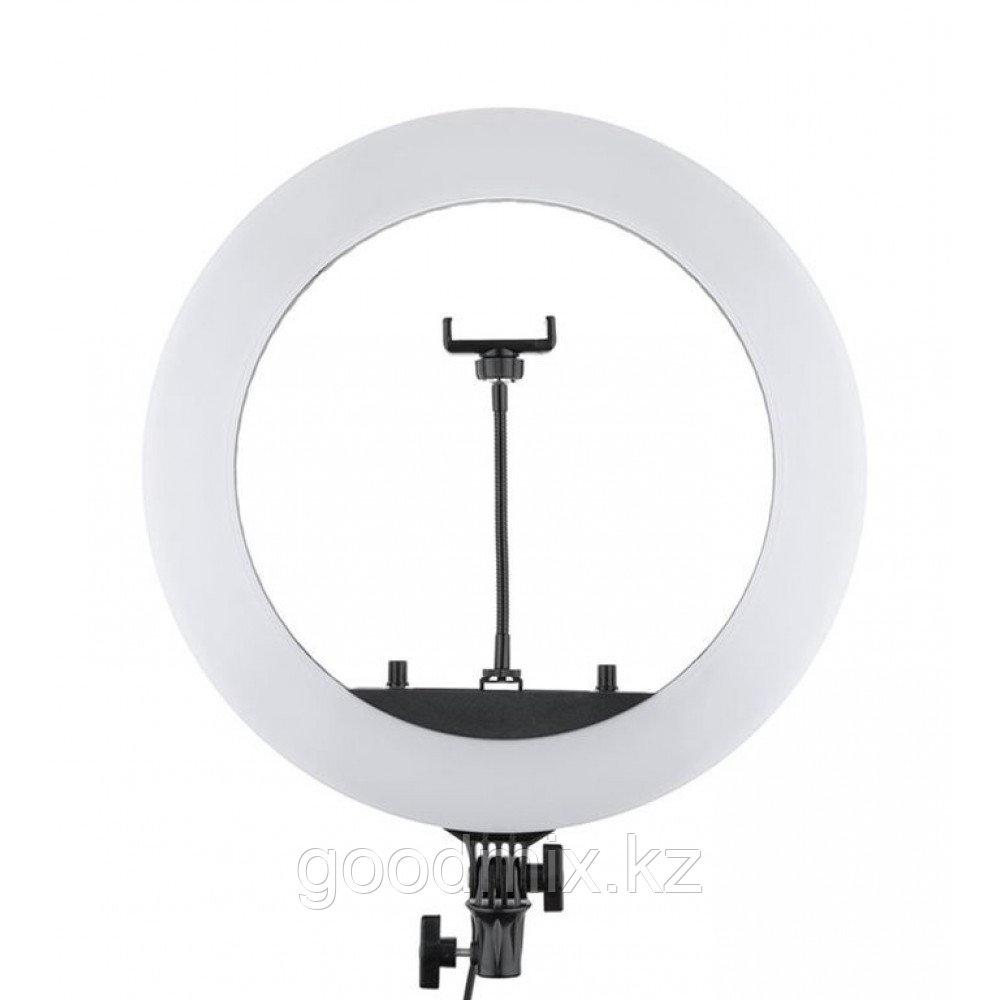 Кольцевая лампа HQ-18 (45 см) со штативом