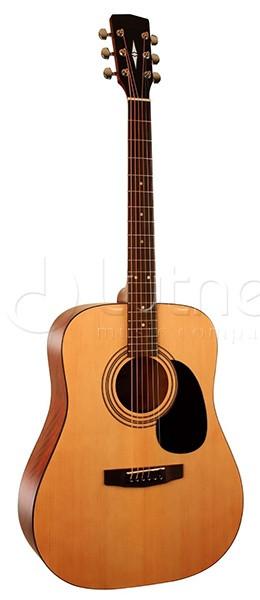 Акустическая гитара с чехлом. Parkwood W81-OP