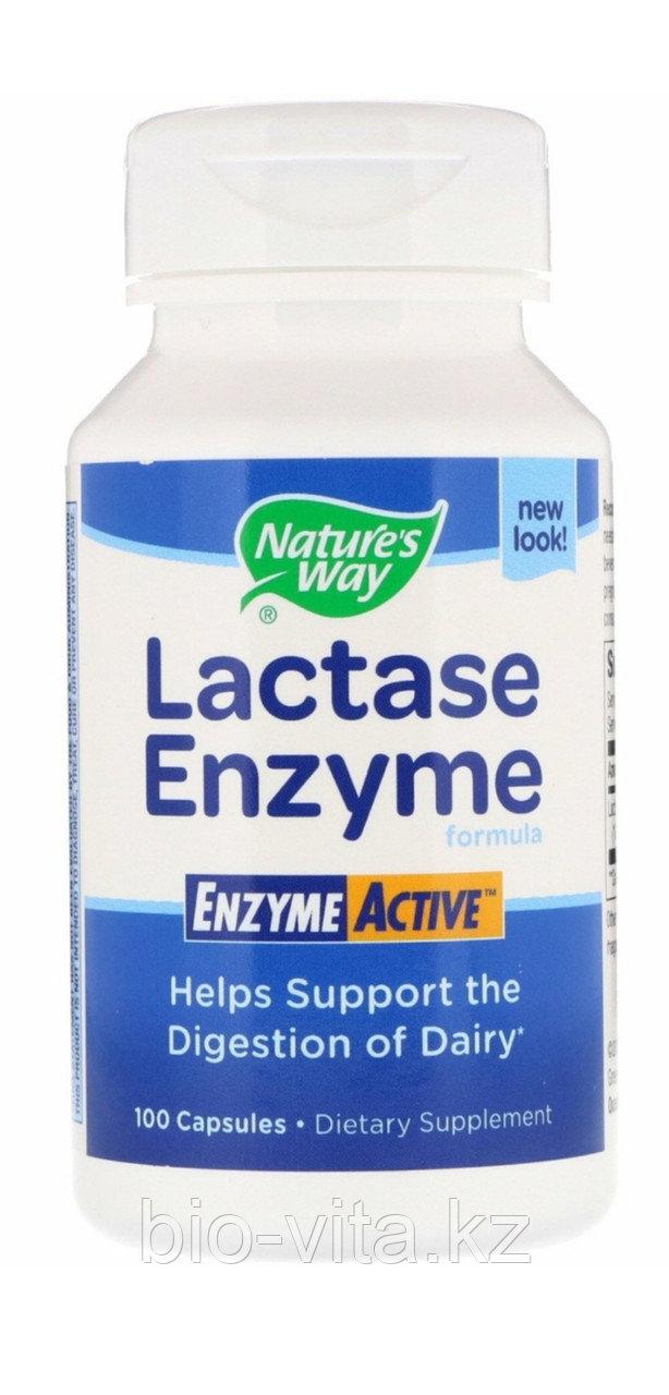 LACTASE Enzyme Лактаза энзим (фермент, для усвоения молочных продуктов) Nature's way100 капсул.