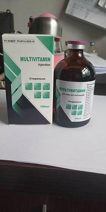 Мультивитамин 100мл, фото 2