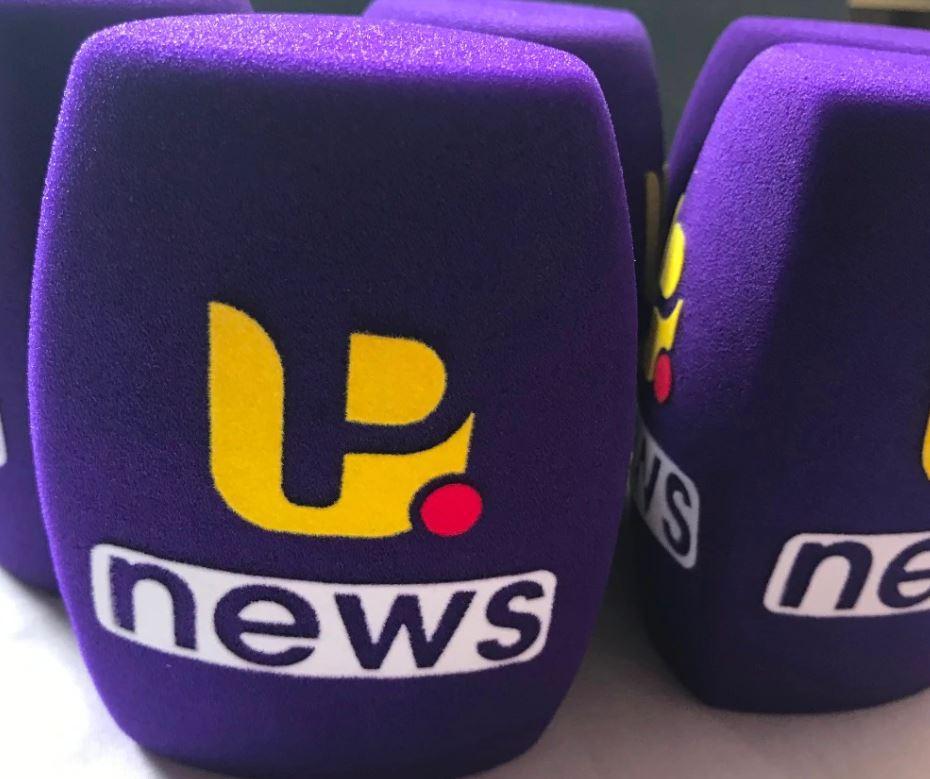 Губка для репортерского микрофона с логотипом (не менее 100 шт)