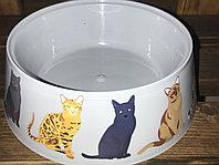 """Миска """"Cats"""" 0,3л"""