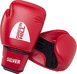 Перчатки для бокса (Everlast,Grant,Green Hill), фото 2