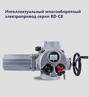 Взрывозащитный многоборотный электрический привод BD05-C8