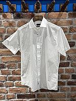 Рубашка мужская Enrico Rosetti (0143)