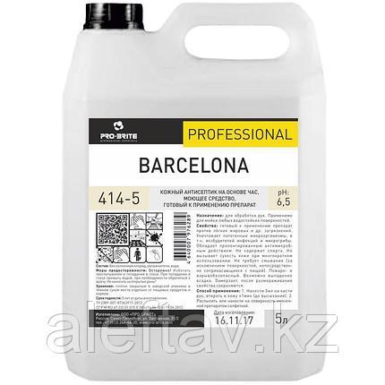 Антисептик для рук Pro Brite Barcelona  5 литров., фото 2