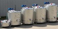 Пастеризатор-ферментер для переработки молока производительностью от 50 до 700 литров за цикл.