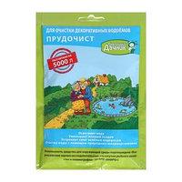 Биологическое средство для чистки декоративных прудов и фонтанов 'Прудочист', 90 гр