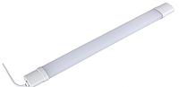 Светильник светодиодный  LED   ЛЛП65 36W 6500K IP65
