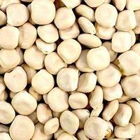 Семена Люпин Белый 25 кг (комплект из 3 шт.)