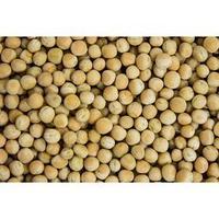 Семена Горох Посевной 25 кг (комплект из 3 шт.)