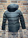 Куртка зимняя Burberry (0163), фото 2